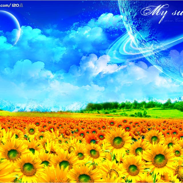 壁纸 成片种植 风景 植物 种植基地 桌面 640_640