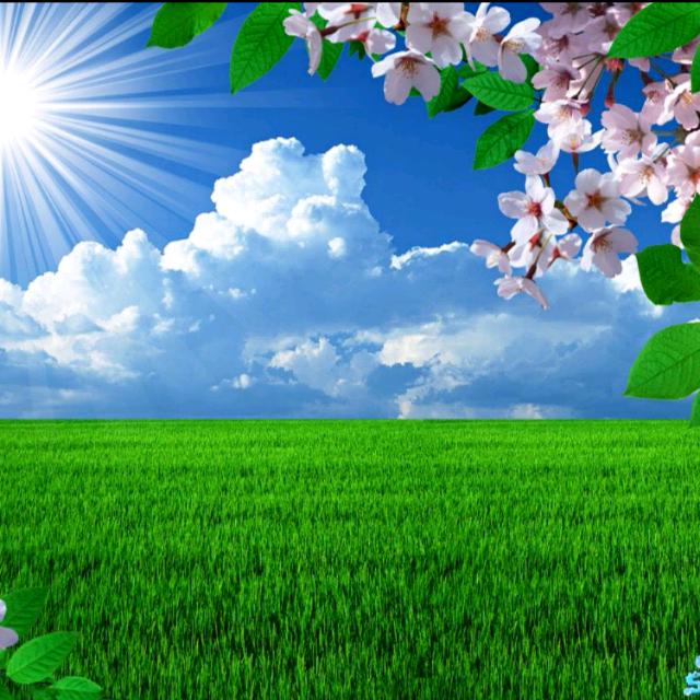 微信头像风景阳光明媚