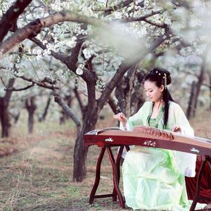 中国特色民族器乐演奏合集