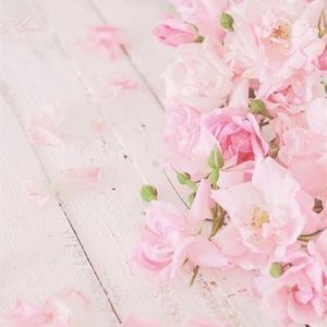 【和风篇】记录下花开的旅途